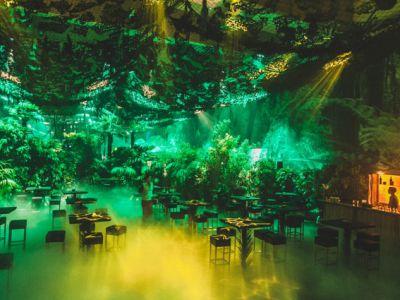 Wristbanditz and NXP create jungle fever in Vienna
